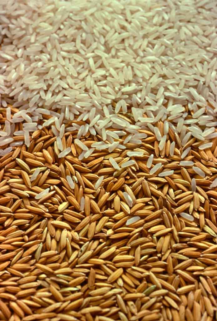 Milled and paddy rice