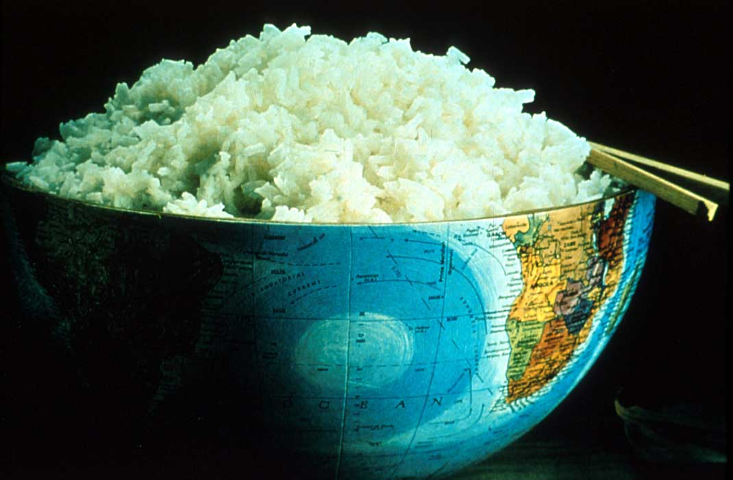 Rice world-bowl